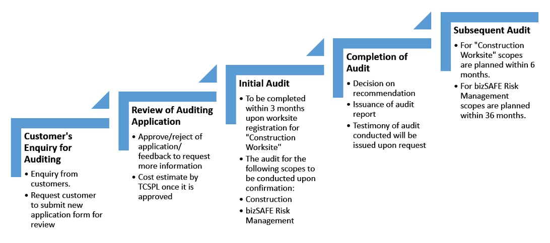 WSH Auditing Process